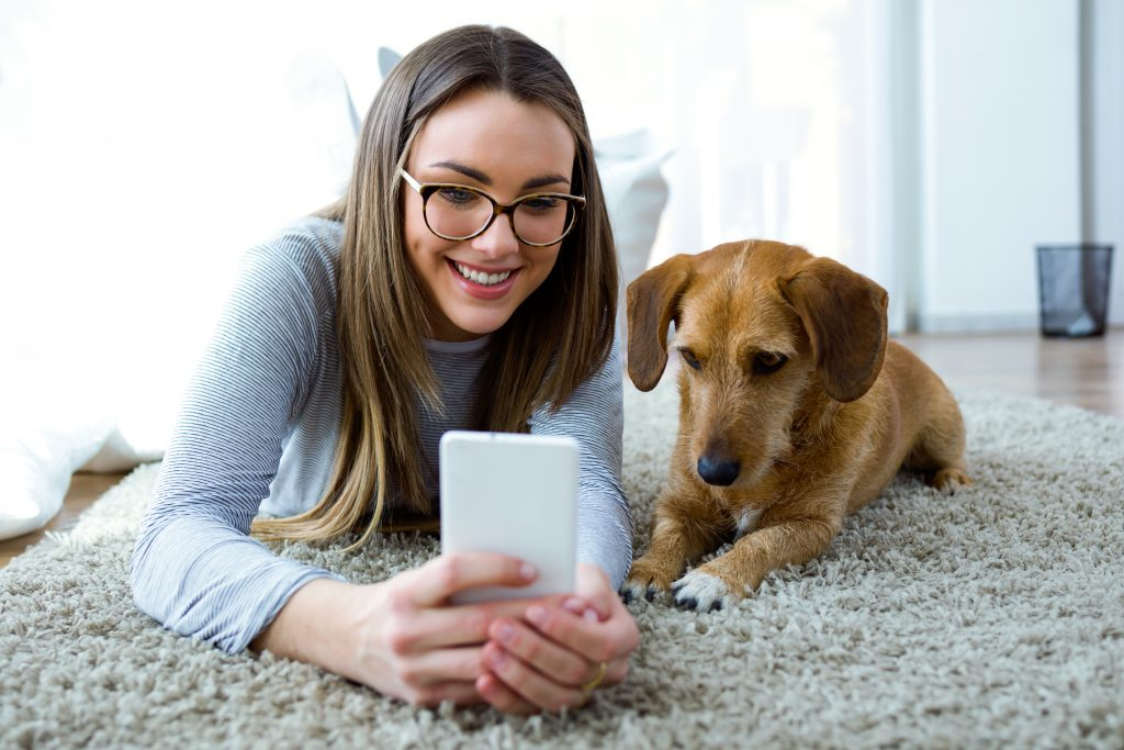 dog lover checking email